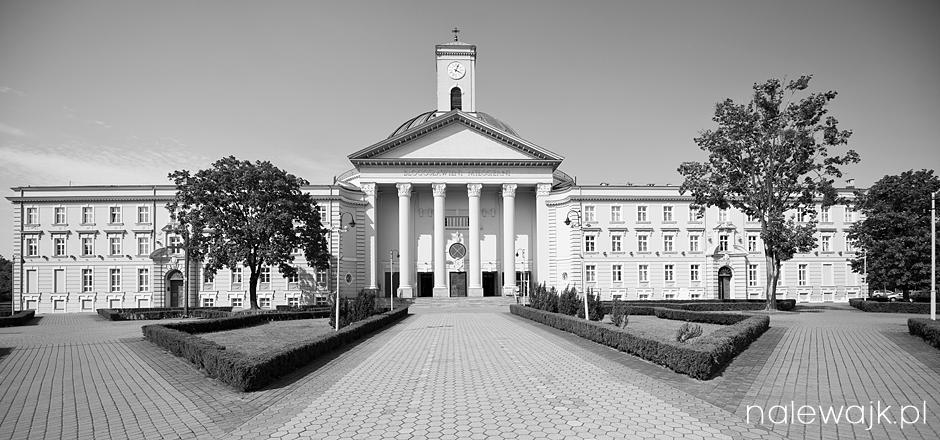 Ślub Bazylika Bydgoszcz | Sesja fotograficzna | Zdjęcia czarno białe
